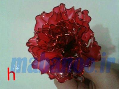 گل رز با رنگ شیشه ای